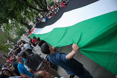 Palestine protest 7 5 14-7448