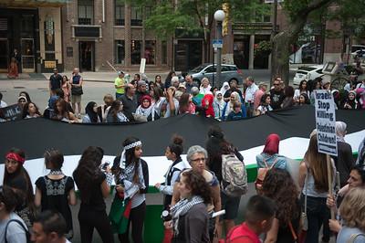 Palestine protest 7 5 14-7456
