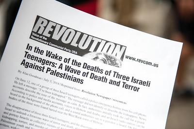 Palestine protest 7 5 14-7440
