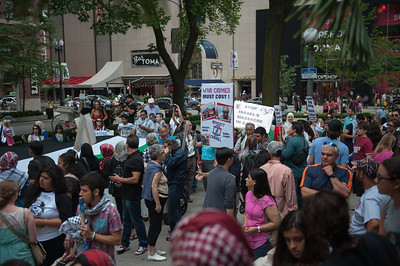 Palestine protest 7 5 14-7454