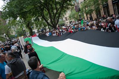 Palestine protest 7 5 14-7449