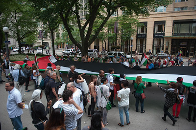 Palestine protest 7 5 14-7452