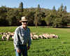 Shepherd and sheep.  101013_2023