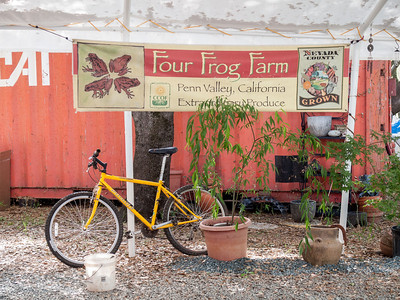 Four Frog Farm, May 17, 2012