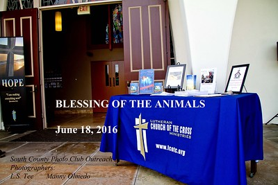 Blessing of the Animals - 06-18-2016