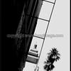 Woodland Ladder