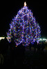 DAVID LACHANCE — BENNINGTON BANNER<br /> Crowds admire the lighted tree Wednesday at the Community Tree Lighting on the grounds of the Vermont Veterans' Home in Bennington.