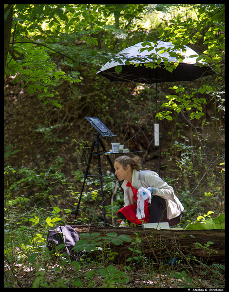 Plen Air artist working alongside the Red Trail and Ramanessin Brook.