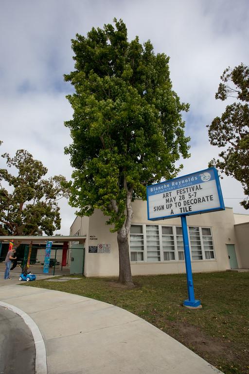 Blanche Reynolds School