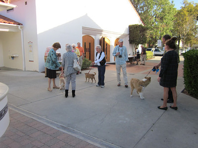 Blessing of Animals 2012