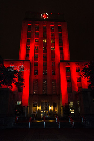 """The American Heart Association - Houston """"Go Red"""" 2013"""