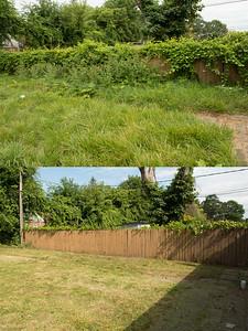 1-fence-compare