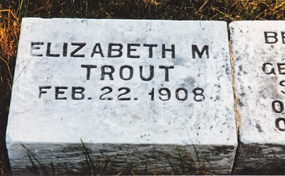 Elizabeth M. Trout, stone attached to children of George & Ella Schrack. Does anyone know if this was another child of theirs, or how related?  Located in St. Daniels, Robesonia, PA.