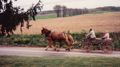 For Roy's 80th birthday, the family rented horses to pull Roy's Gruber Wagon. Roy seated in front with driver, and Mae behind.