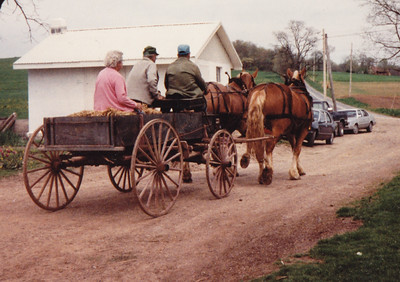 For Roy's 80th birthday, the family rented horses to pull Roy's Gruber Wagon.