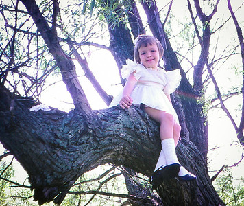 Beth A. Hill (later Humma) alway loved to climb trees, here partway up their Willow Tree.