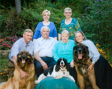 The Humma famil. Back row: Lisa and Cathy. Middle row: Jeb, Ronald (father), Marian (Werner, mom) and Beth (Hill, Jeb's wife). Front row: Hanna ('Forever Green' Leonberger), Molly (Springer Spaniel) and Benson ('von Alpensee' Leonberger)