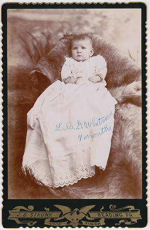 Lulu G. Whitman, 4 months.