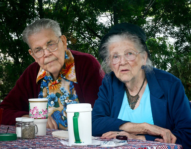 Donald Elmer Yeich with his sister Mildred (Yeich) Strouse, at Steve Werner picnic, Laureldale, PA, July, 2007.