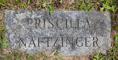 Priscilla Naftzinger, born about 1839, daugther of Joseph and Catherine (Dieffenbach) Naftzinger.