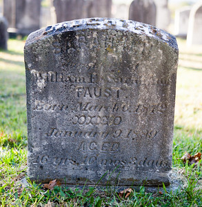 Sarah ____, (wife or daughter?) of William F. ___ Faust. Born 1872(?), died Jan 9, 1889(?)