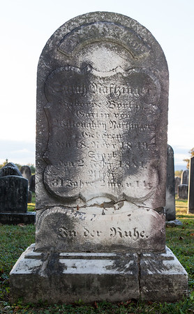 Sarah Naftzinger ... wife of Willoughby Naftzinger. Shw was born 18 November 1849 and died 2 February 1881.