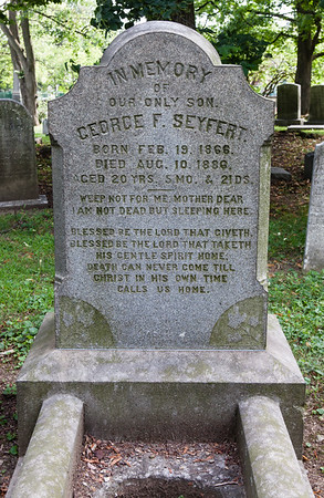 Son: George F. Seyfert, Feb 19, 1866 - Aug 10, 1886.