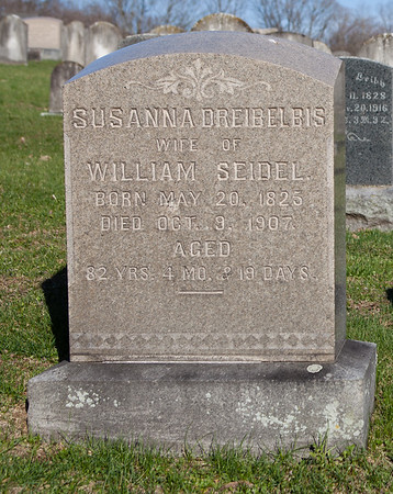 Susanna M. (Dreibelbis) Seidel, May 20, 1825 - Oct 9, 1907. Daughter of William M. Dreibelbis and Susanna Miller.  1st husband: Amos B. Kaufman, Jul 13, 1819 - Oct 10, 1878. Son of Jacob Kaufman and Elizabeth Becker.  2nd husband: William Seidel, Sep 23, 1817 - Mar 4, 1898. Son of John Seidel and Catharine Stitzer.  The son of Susanna and Amos is: Hiram Kauffman.  The children of Susanna and William are: Ellen Louisa, Charles V., William D., Frances I., Susan C., Mahlon D., Mary M., George D., and Richard D. Seidel.