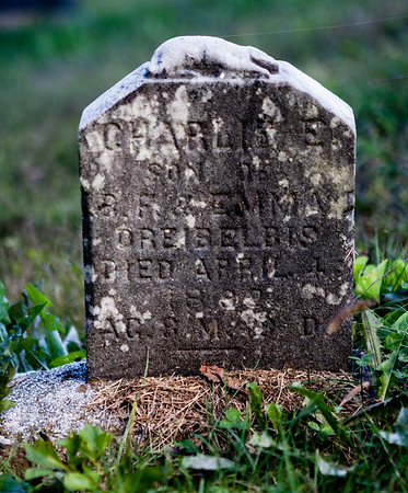 Charles E., son of ___ & Emma Dreibelbis, Died April __ 189_?, age 8?
