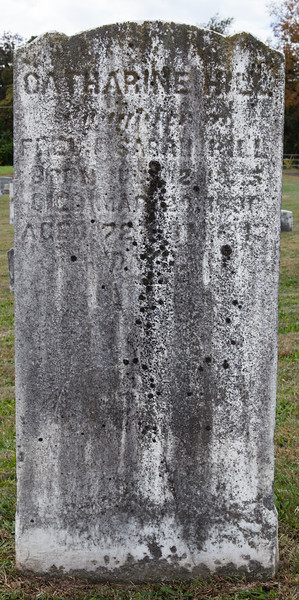Catharine Hill, daughter of Fred? & Sarah Hill, born __ 12, ___5, died Mar 3_, 1890??, age 28 or 78?