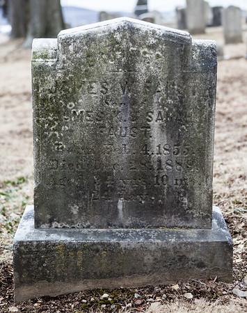 James W. Faust son of James K. & Sarah Faust, 1855 - 1888.