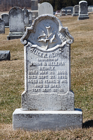 Alice K. Heinly, May 29, 1860 - Sept 27, 1876. Daughter of John & Helena Heinly.