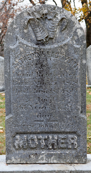Catharine Hackman, wife of David Rentschler. Born 17 Dec. 1827, died 30 Nov. 1883.
