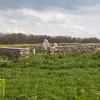 Wartzluft cemetery, located near Shoemakersville, PA, between Kuzan's True Value (Rt. 61) and Dreibelbis Mill.