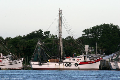 The Shrimp Boats at Dock