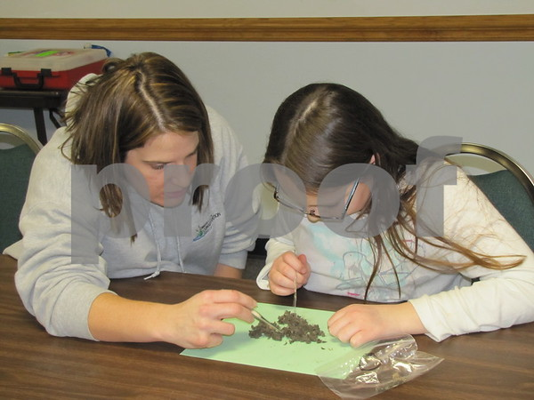 Erin Ford, Naturalist of Webster County and DNR, points out some findings in owl pellets to one of the kids attending the activities at Webster County Extension.