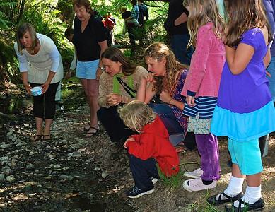2012 Salmon Release Hope Bay