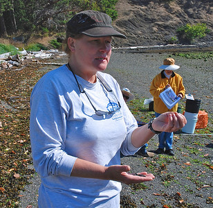2012 Summer PICA Forage Fish Monitoring project