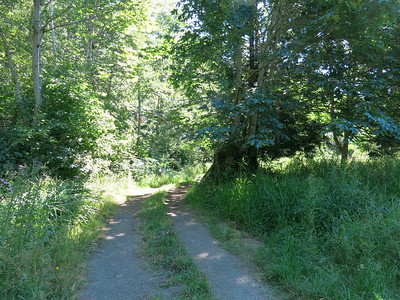 Einar's Hill proposed byway