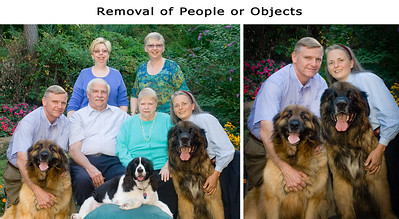 Here's a sample of a family portrait; the center people and spaniel were removed to create a portrait of my husband and I with our dogs.  Just about any object, including people, can be removed from images.