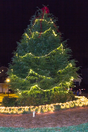 Tree_Lighting_062