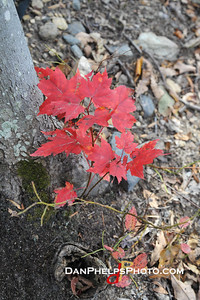 2014 Key Fall A-Trail Hike-30