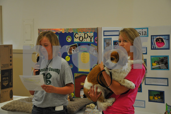 -Messenger photo by Joe Sutter<br /> <br /> Jessica Shirbroun, 11, of Callender, gives her pet show presentation aided by her sister Courtney Shirbroun, 16. Jessica presented a story of what Cody does in a day, and received the Best Pet Story award.