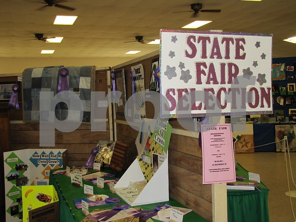 Blue Ribbon winning entries advancing to the Iowa State Fair.