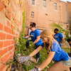 Living Learning Communities Day of Service