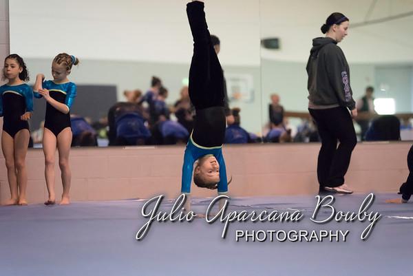 Gymnastics Plus - 1202