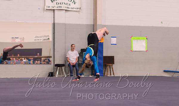 Gymnastics Plus - 1112
