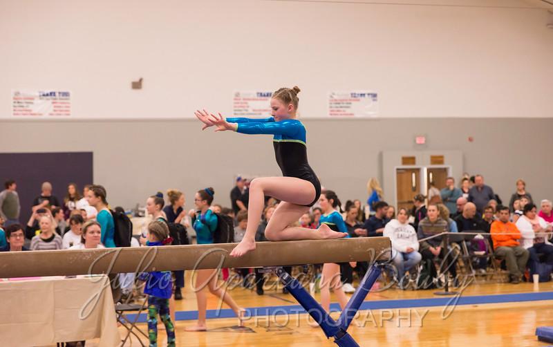 Gymnastics Plus - 0458