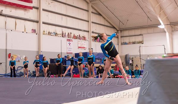 Gymnastics Plus - 1109