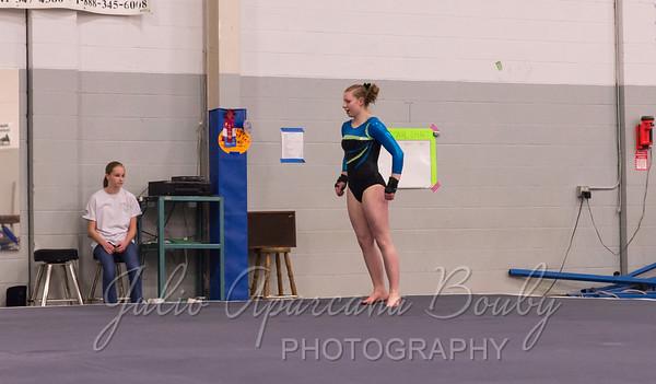Gymnastics Plus - 1115